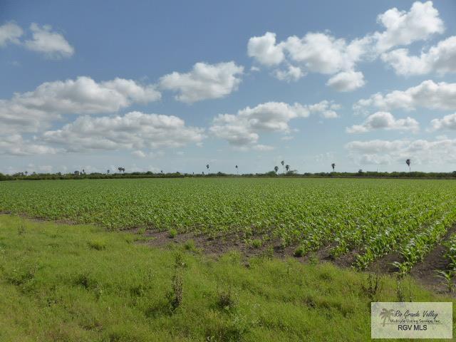 2480 N San Roman Rd., Bayview, TX 78566 (MLS #29716888) :: The Monica Benavides Team at Keller Williams Realty LRGV