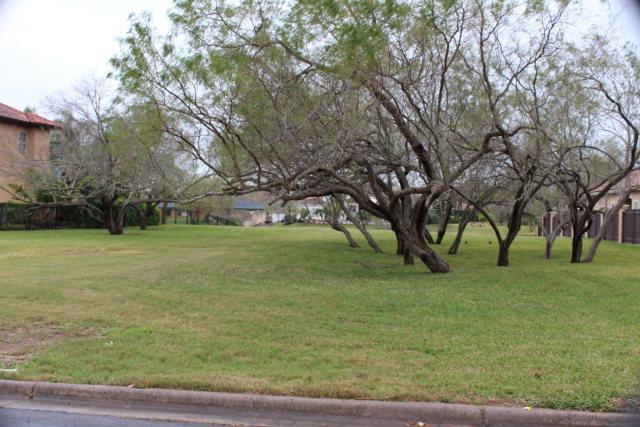 Lot 4 Blk 1 Calle Esplendida, Brownsville, TX 78526 (MLS #29717507) :: The MBTeam