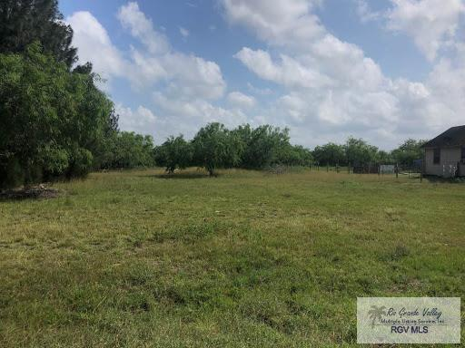 346 Roberta Rd., Los Fresnos, TX 78566 (MLS #29718060) :: The Monica Benavides Team at Keller Williams Realty LRGV