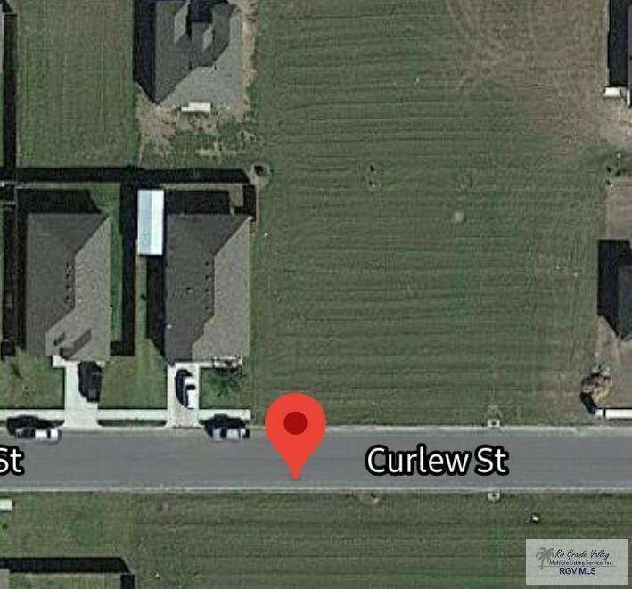 000 Curlew St - Photo 1