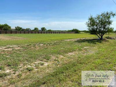 000 Old Alice Rd., Los Fresnos, TX 78566 (MLS #29725015) :: The MBTeam