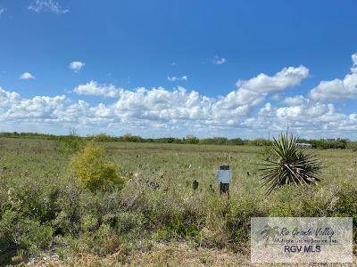 0 San Roman Rd., Bayview, TX 78583 (MLS #29725918) :: The MBTeam