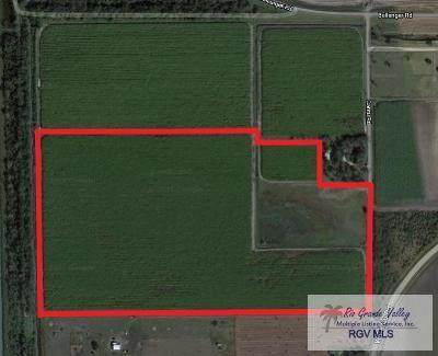 54.48 AC Cantu Rd. - Photo 1