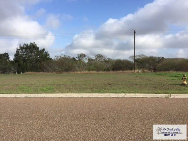 6112 Lynx Dr., Brownsville, TX 78521 (MLS #29729373) :: The MBTeam