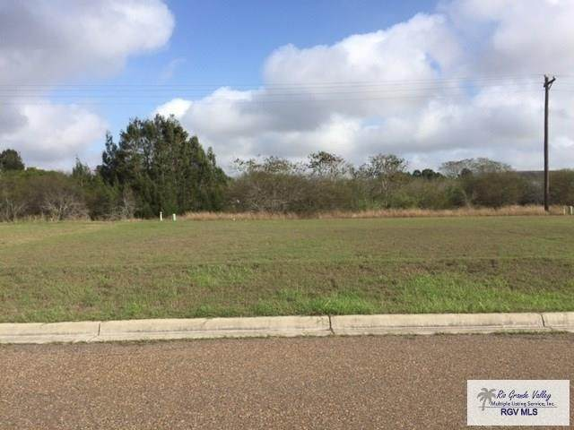 6116 Lynx Dr., Brownsville, TX 78521 (MLS #29729374) :: The MBTeam