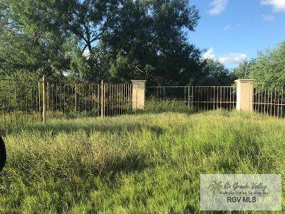 0 Old Military Hwy 281, Brownsville, TX 78520 (MLS #29730037) :: The MBTeam