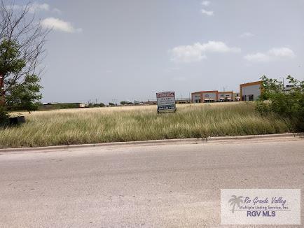 601 Springmart Blvd., Brownsville, TX 78526 (MLS #29712727) :: The Monica Benavides Team at Keller Williams Realty LRGV