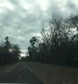 217 Woodland Drive - Photo 1