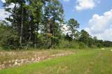 00000 Grand Pines - Photo 4