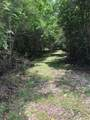 Tract 7 Section 1 Private Road 648 Cedar Lake Street - Photo 8