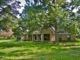 12070 Old County Road - Photo 1