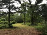 26150 Grand Pines Road - Photo 1