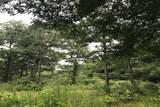 26150 Grand Pines Road - Photo 5