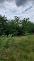 205 Deer Trail Road - Photo 10