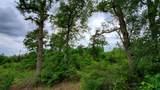 205 Deer Trail Road - Photo 6