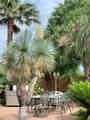 11303 Palm Bay Street - Photo 3