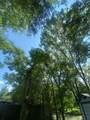000 Scarlett Oak - Photo 1