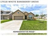 17518 White Baneberry Drive - Photo 1
