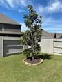 4608 Mesquite Terrace Drive - Photo 35