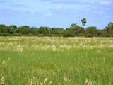 Lot 1(1-2) Seabird Acres - Photo 1