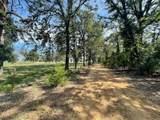 TBD Private Road 305 - Photo 1