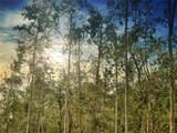 0 Oleander Dr - Photo 1