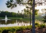 27125 Madeline Lake Circle - Photo 12