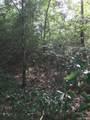 10668 Deer Hill Drive Drive - Photo 3