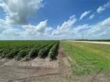 3.8 acres Fm 1952 - Photo 1