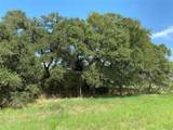 Tract 3 (21.457 Acre Hwy 290 - Photo 19