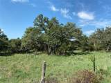 Tract 3 (21.457 Acre Hwy 290 - Photo 22