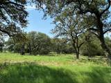 Tract 3 (21.457 Acre Hwy 290 - Photo 36