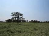 12.997 +/- Acres Fm 39 - Photo 20