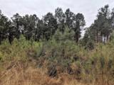 - 36 Acres County Road  4416 - Photo 1