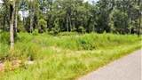 29019 South Plum Creek Drive - Photo 3