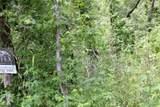 00 Dogwood - Photo 1