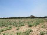 129 +/- Acres Cr 495 - Photo 13