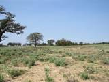 129 +/- Acres Cr 495 - Photo 14