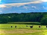 2802 County Road 386 - Photo 1