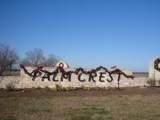 3918 Palm Crest Drive - Photo 1