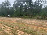 Tract 1 N 5 Acres Grand Pines Drive - Photo 4