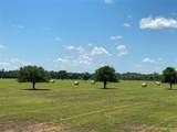3151-C Orchard Drive - Photo 1