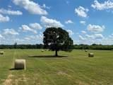 3151-C Orchard Drive - Photo 17
