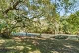 302 Live Oak Ln - Photo 10