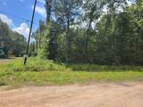 Lot 151 County Road 349 - Photo 1
