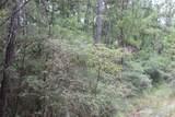 TBD Camp Seale Road - Photo 1