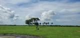 0 Arbor Crest - Photo 8