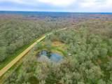 15425 Tierra Grande - Photo 1
