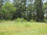 28332 Meadow Forest - Photo 2
