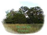 TBD Fm 109 - Photo 1